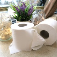 Toilet paper comparison